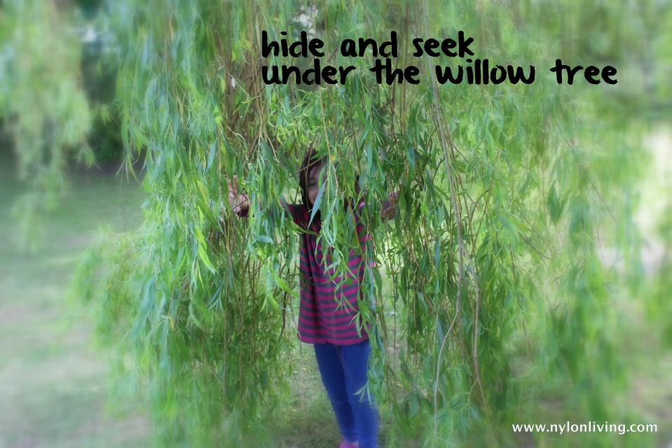 hide and seek int