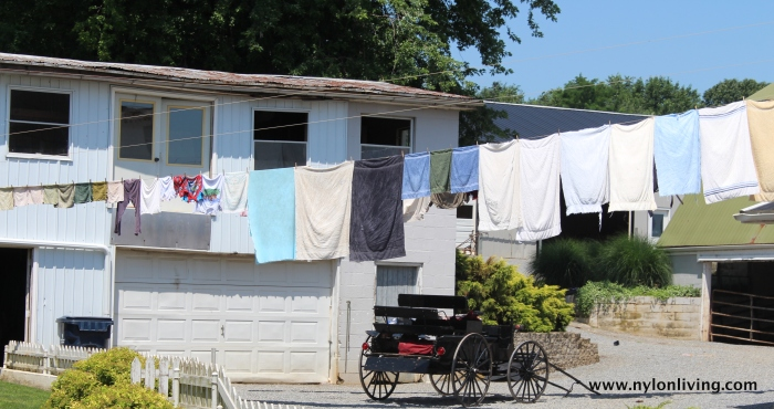 typical home - laundry on the line and a buggy outside the garage