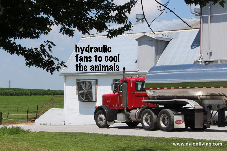 hydraulic fans