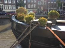 houseboat topiaries