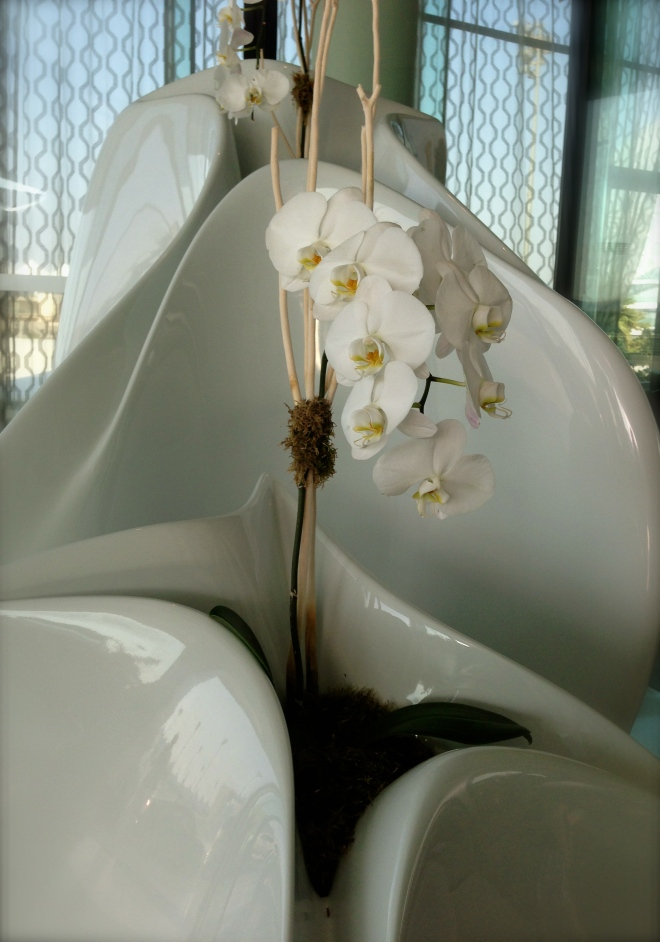Viceroy Hotel orchids