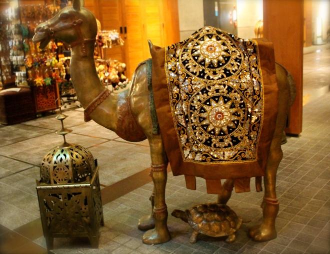 souk camel