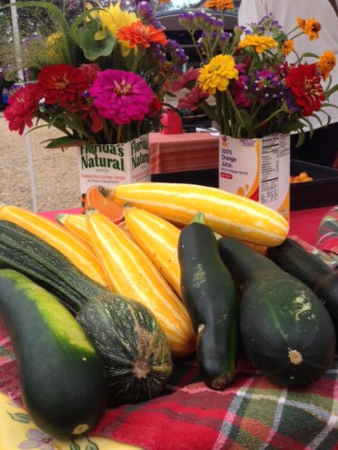 marrow and zucchini